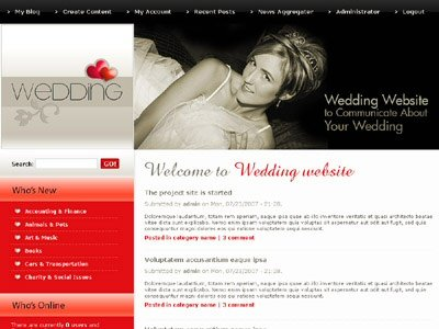 red and gray wedding website