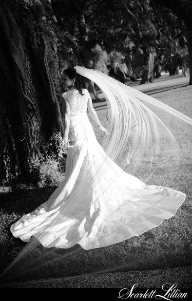 cathedral length veil, cathedral veil, bridal veil