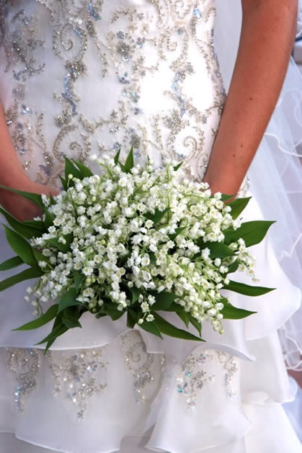 Lily of the Valley Cluster