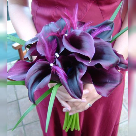 Purple calla lilies Flowers Huh I 39m pretty sure I have not tackled the