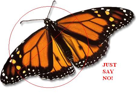 Just say no to butterfly releases!